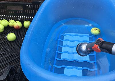 Hur gör man äppelmust - utrustningen du behöver 3
