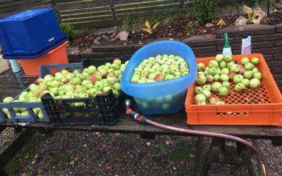 Ny utrustning för att göra äppelmust
