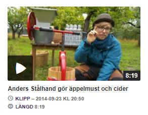 Anders Stålhand gör äppelmust och cider 1