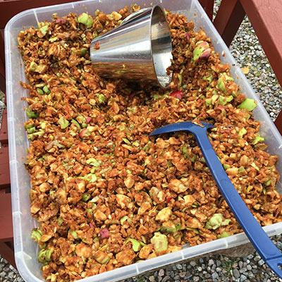Hur gör man äppelmust - dags att musta äpplen 4