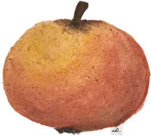 Äpplets dag 25 september 🍏 5