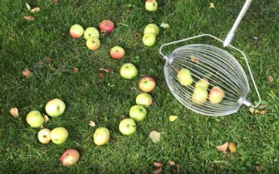 Smart äppelplockare till din trädgård